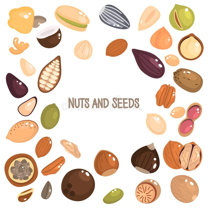 Nuts and seeds color flat icons set royalty free illustration