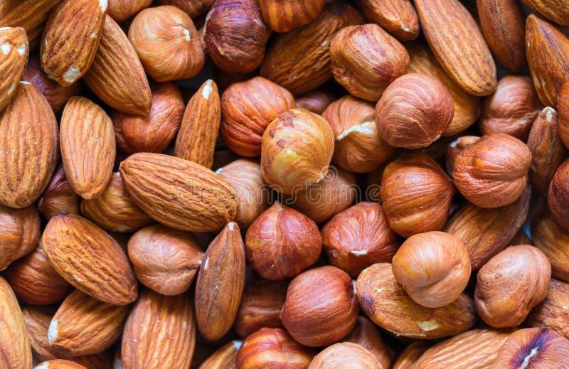 Nuts Stapelhintergrund Acajoubaum, Mandel, Haselnussmischungsnahaufnahme Rustikale Fahnenschablone des biologischen Lebensmittels lizenzfreie stockfotografie