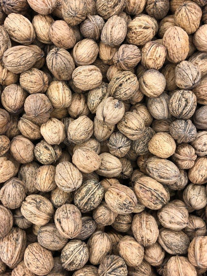 Nuts - Walnuts royalty free stock image