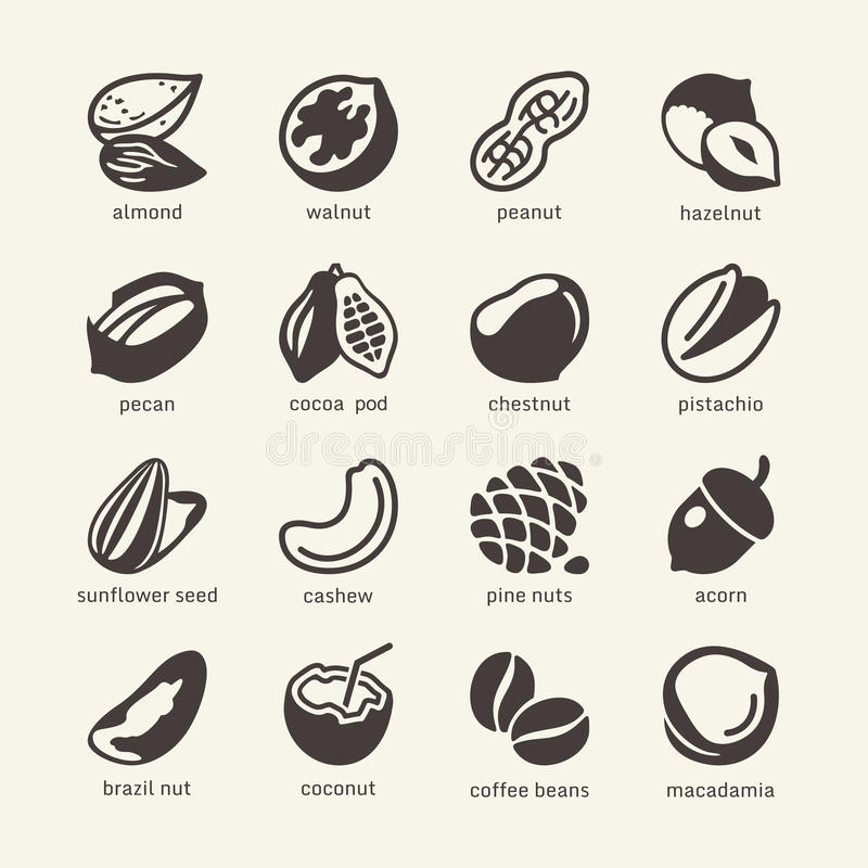 16 Nuts - web icon cet. Nuts simple pictograms - vector icons collection