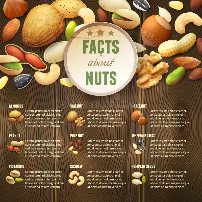 Nuts On Wooden Background. Natural raw nuts food mix on wooden background vector illustration stock illustration