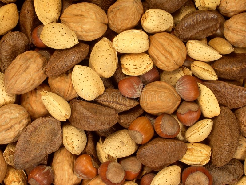Download Nuts About You 1 Stock Images - Image: 1589544