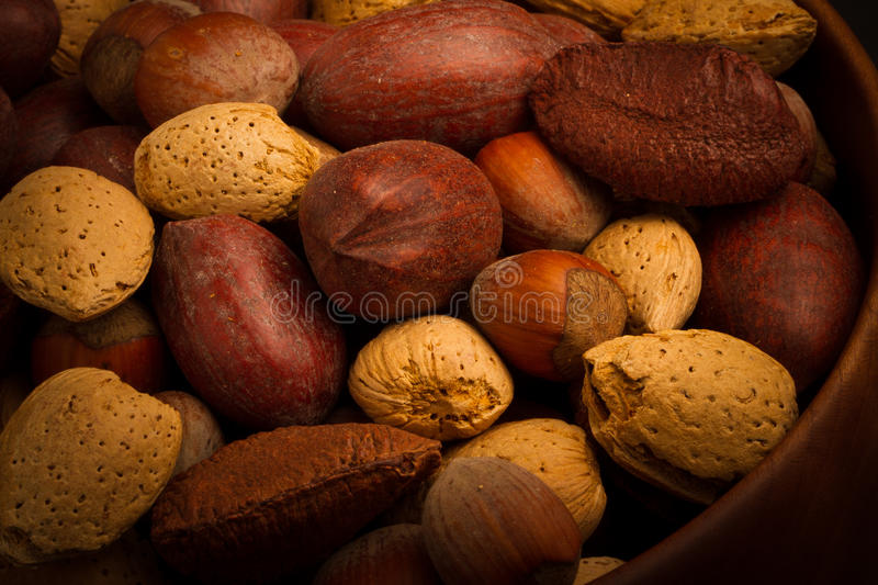 Download Nuts for you stock photo. Image of nutshell, healthy - 37651958