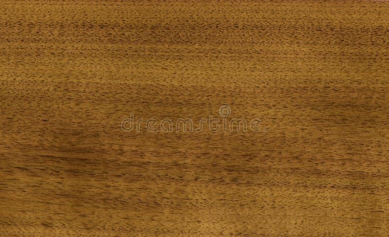 Download Nutwood veneer stock image. Image of close, backgrounds - 14850895