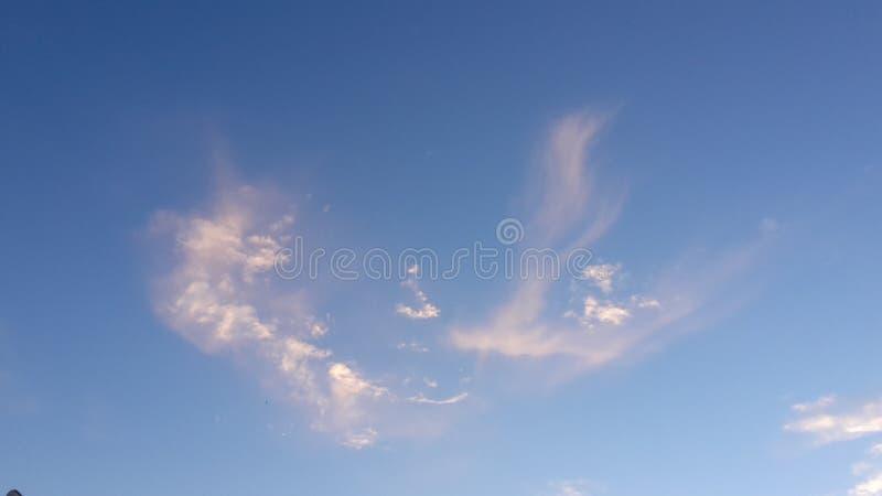 Nuvem de Eagle foto de stock royalty free