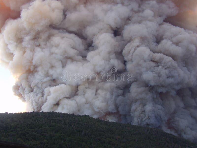 Nuvem de fumo na floresta foto de stock