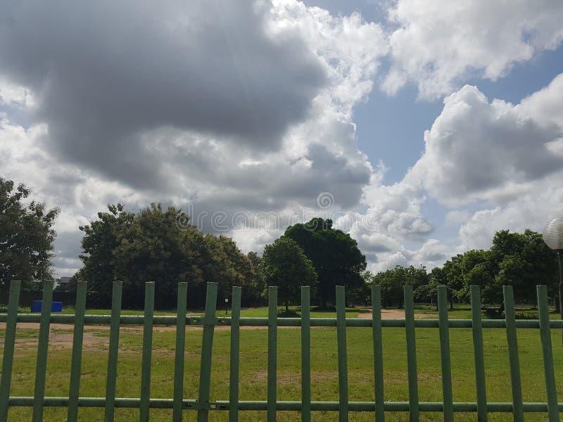Nuvem e verdes fotos de stock