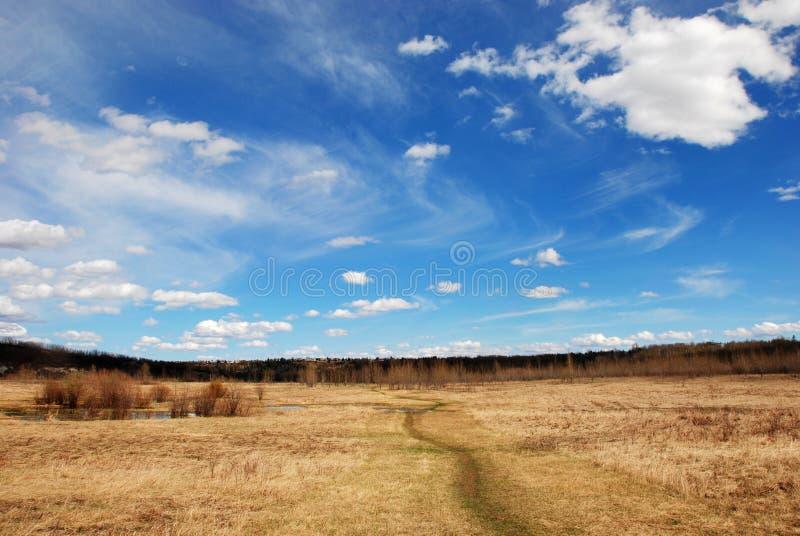 Nuvens acima da grama imagens de stock royalty free