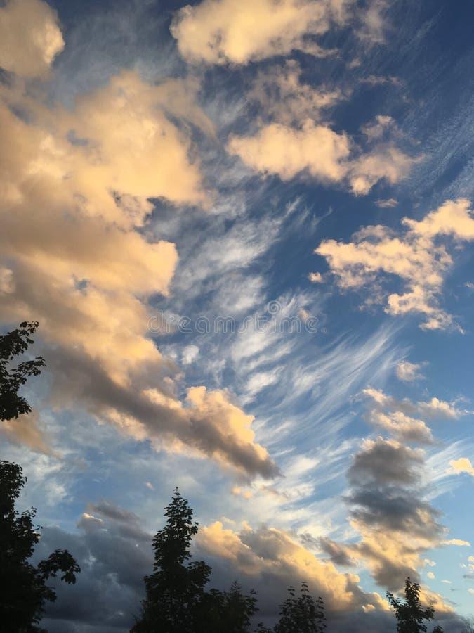 Nuvens artísticas sobre a silhueta da árvore imagens de stock