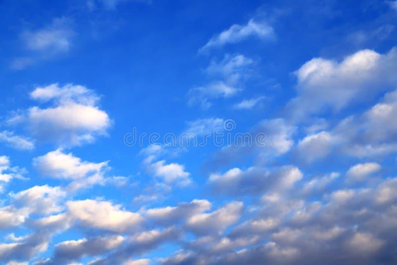 Nuvens brancas, de cúmulo lilático contra o céu azul no pôr do sol, fundo azul imagem de stock royalty free
