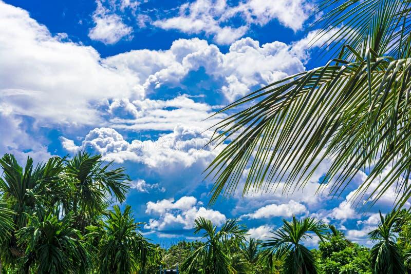 Nuvens brancas e pretas bonitas no céu antes de chover fotografia de stock royalty free