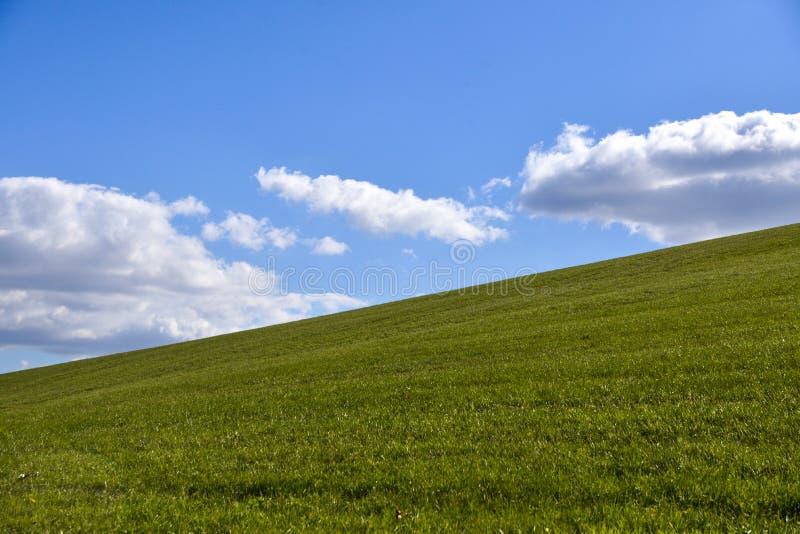 Nuvens brancas grandes em um céu azul acima da grama verde imagem de stock royalty free