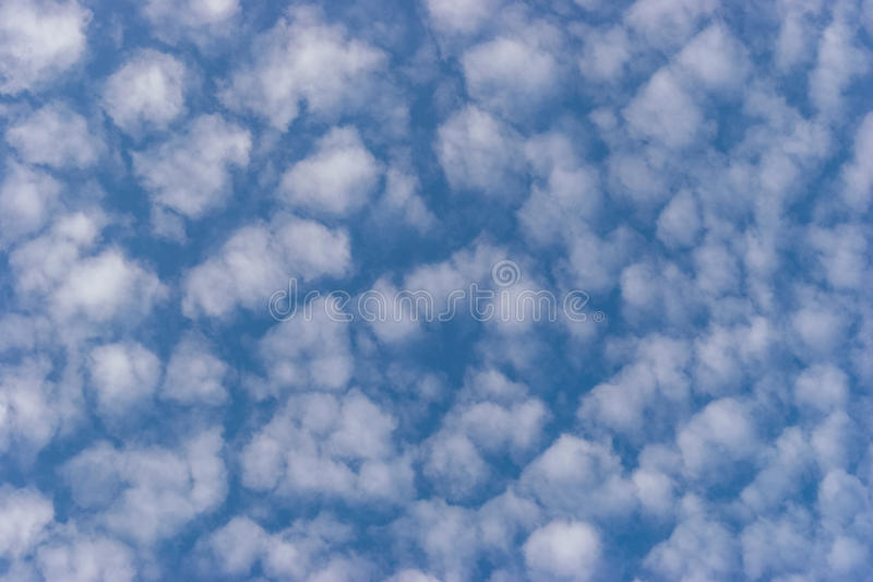 Nuvens de cúmulo brancas pequenas no céu azul imagem de stock royalty free