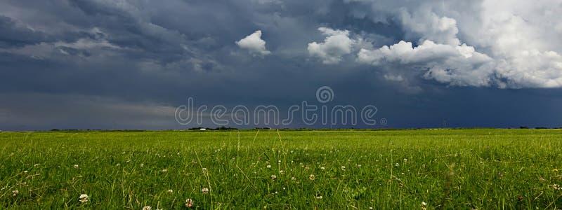 Nuvens de tempestade do Supercell acima do prado com verão Stor da grama verde imagem de stock royalty free