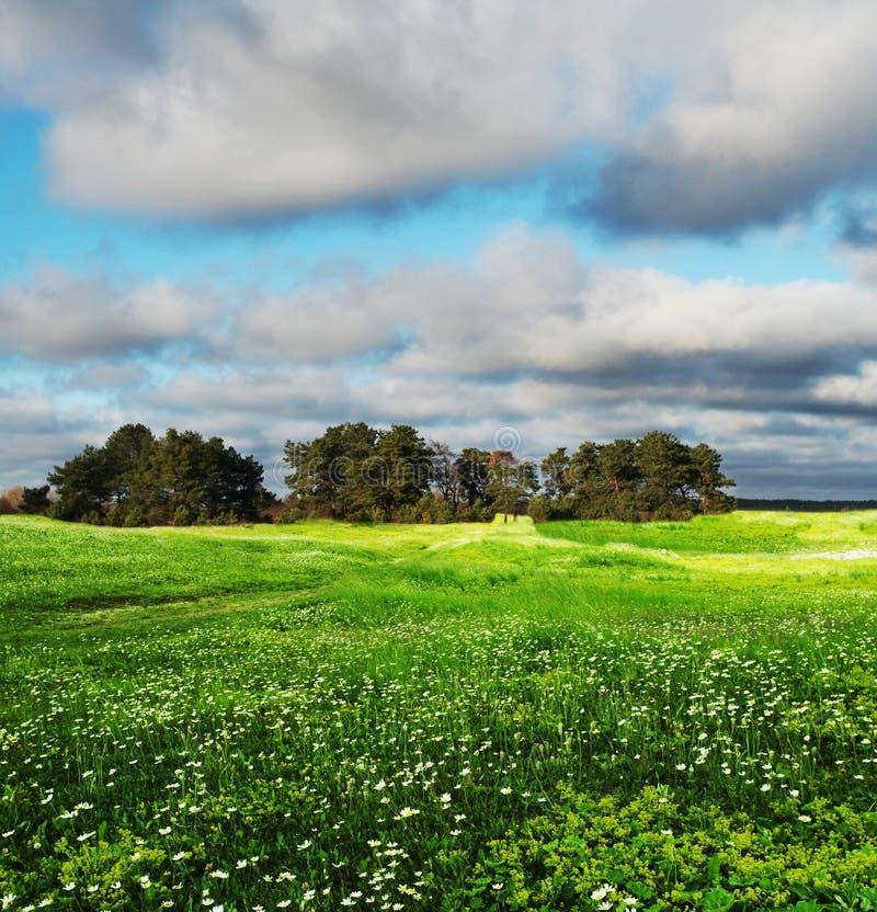 Nuvens do campo e de tempestade fotografia de stock royalty free