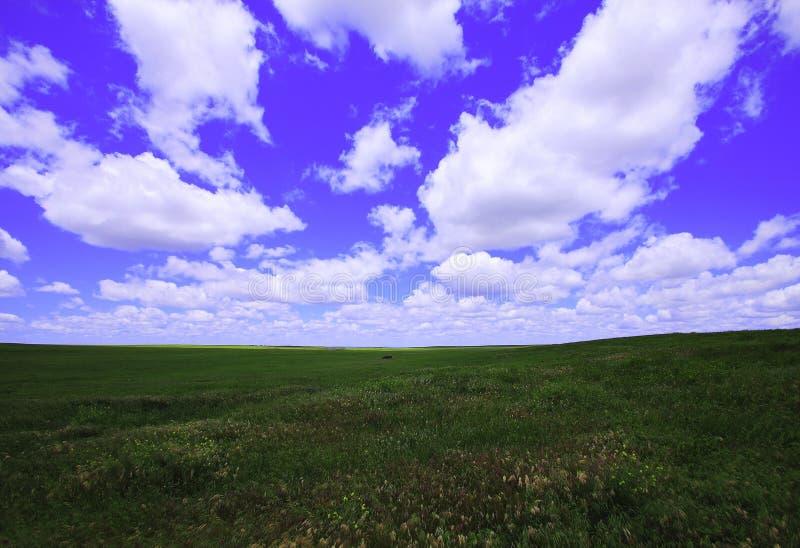 Nuvens do verão fotos de stock