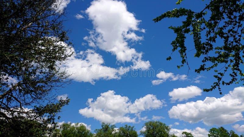 Nuvens e céus azuis no parque do beira-rio, condado de Guelph Ontário Canadá Wellington imagens de stock