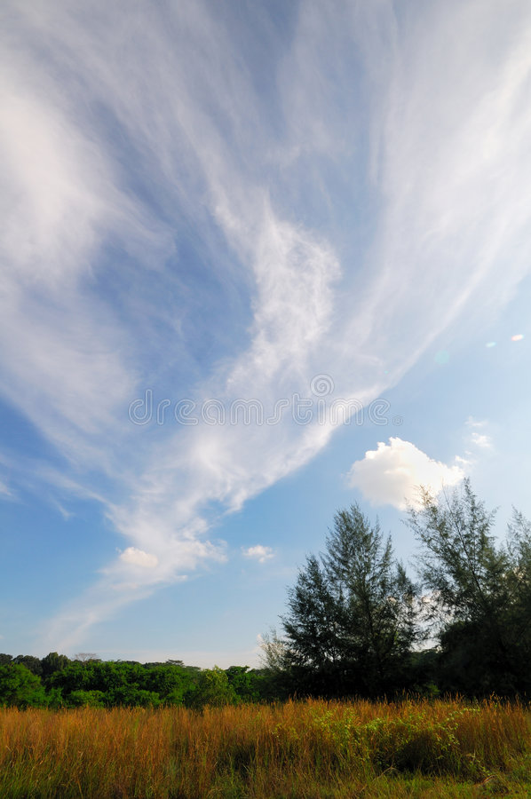 Nuvens e campos 3 foto de stock royalty free
