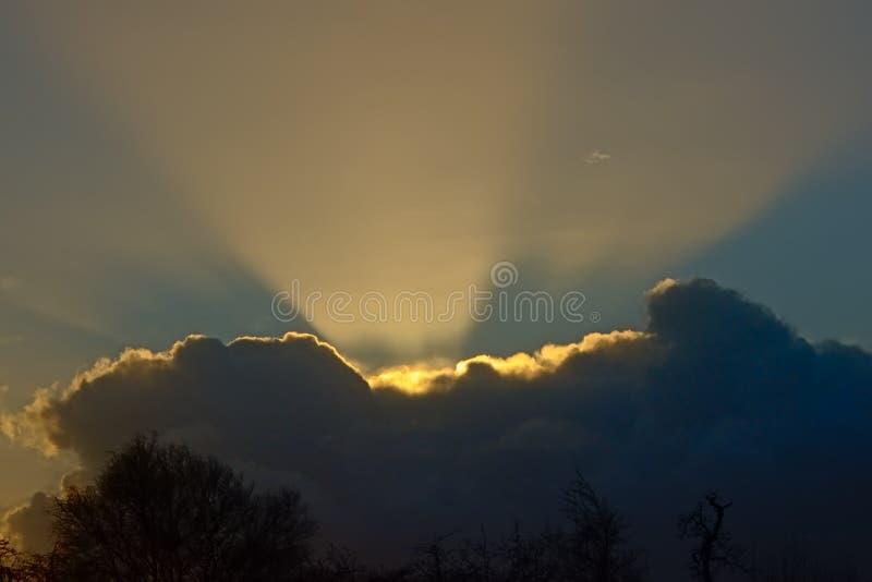 Nuvens escuras acima das silhuetas de árvores desencapadas do inverno, com raios do sol escondido que brilha acima imagens de stock royalty free