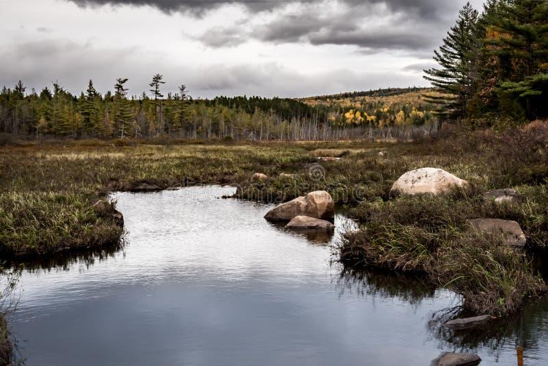 Nuvens escuras sobre o pântano em Maine do norte imagem de stock