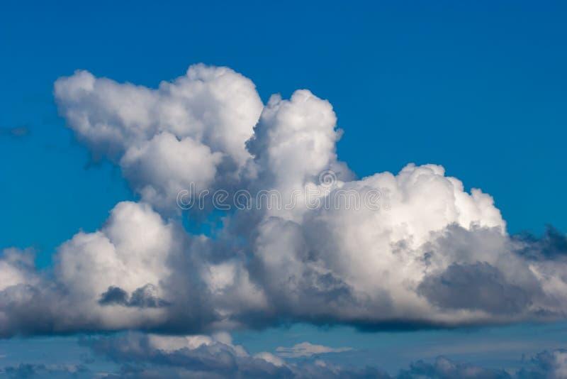Nuvens extravagantes brancas bonitas iluminadas pelo sol em um céu azul imagem de stock royalty free