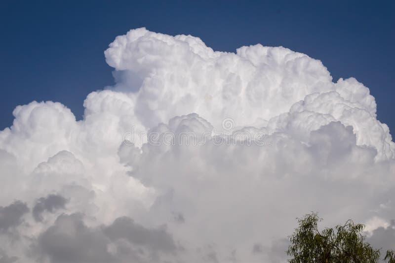 Nuvens leitosas brancas no céu azul imagem de stock