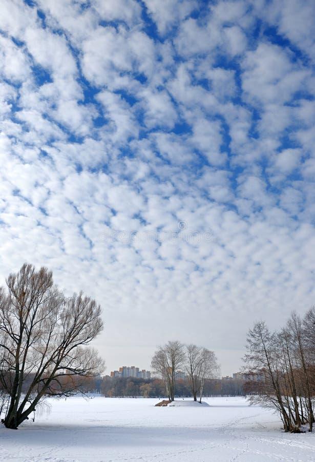 Nuvens no céu do inverno. fotos de stock royalty free