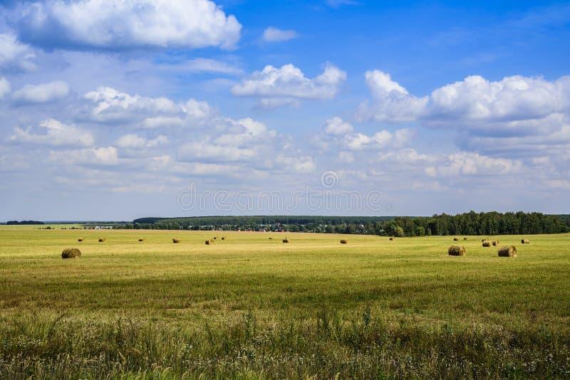 Nuvens no céu e na luz do sol em um campo com feno chanfrado, colhidos nos rolos em um dia de verão claro em agosto fotos de stock royalty free