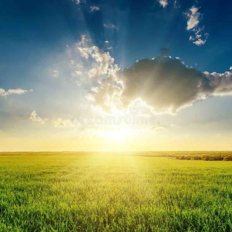 Nuvens no por do sol sobre o campo de grama verde imagem de stock royalty free