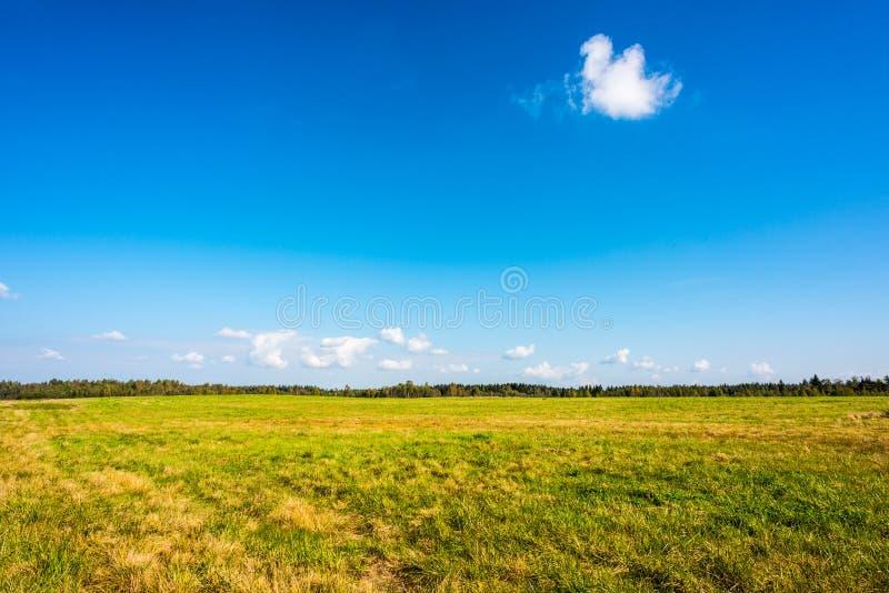 Nuvens no prado fotos de stock royalty free