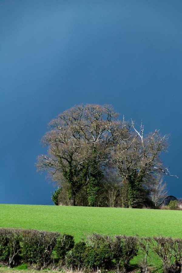 Nuvens, tempestades e luz do sol escuras com tempo BRITÂNICO variável na mola adiantada foto de stock