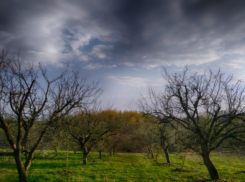 Nuvens tormentosos sob a paisagem verde foto de stock royalty free
