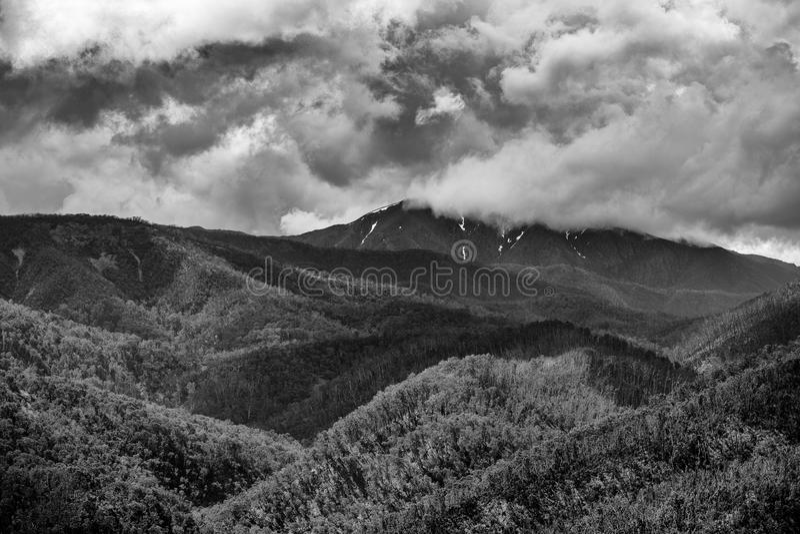 Nuvens tormentosos sobre as florestas alpinas vitorianos na montagem Hotham imagem de stock