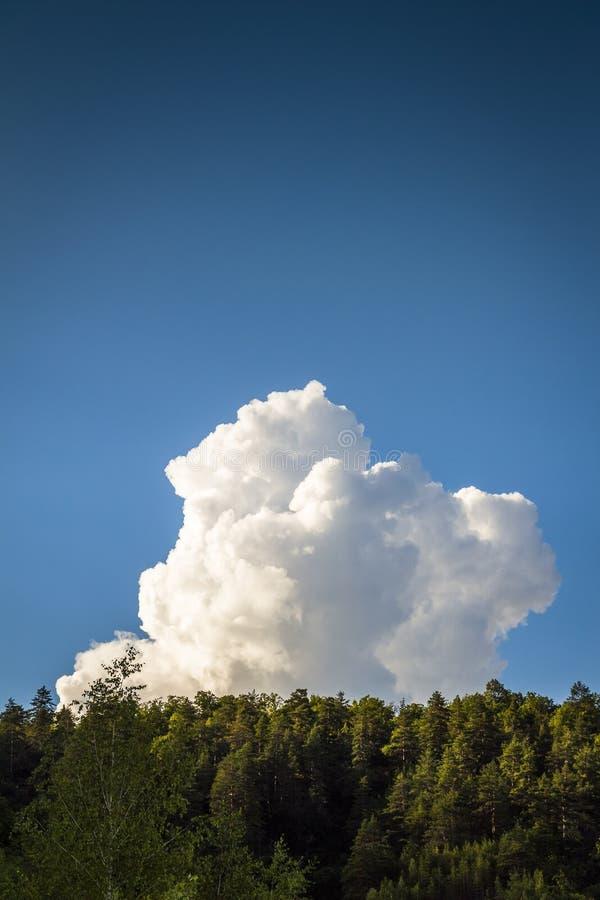 Nuvola bianca isolata immagine stock