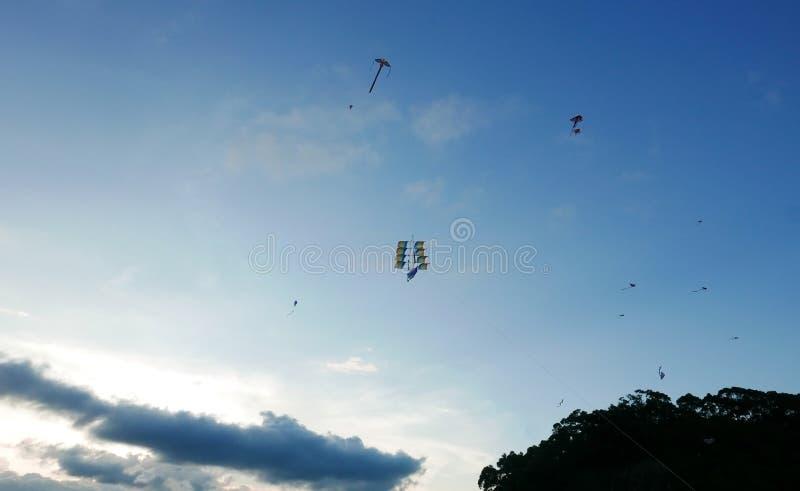 Nuvola, cielo blu, albero con l'aquilone di volo fotografia stock libera da diritti