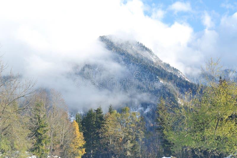 Nuvola della montagna di mattina immagine stock libera da diritti