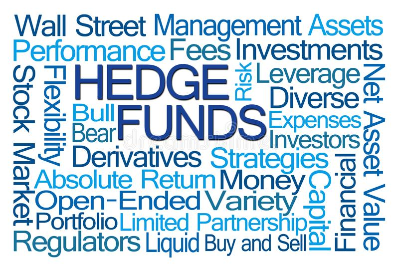 Nuvola di parola di Hedge Funds illustrazione di stock