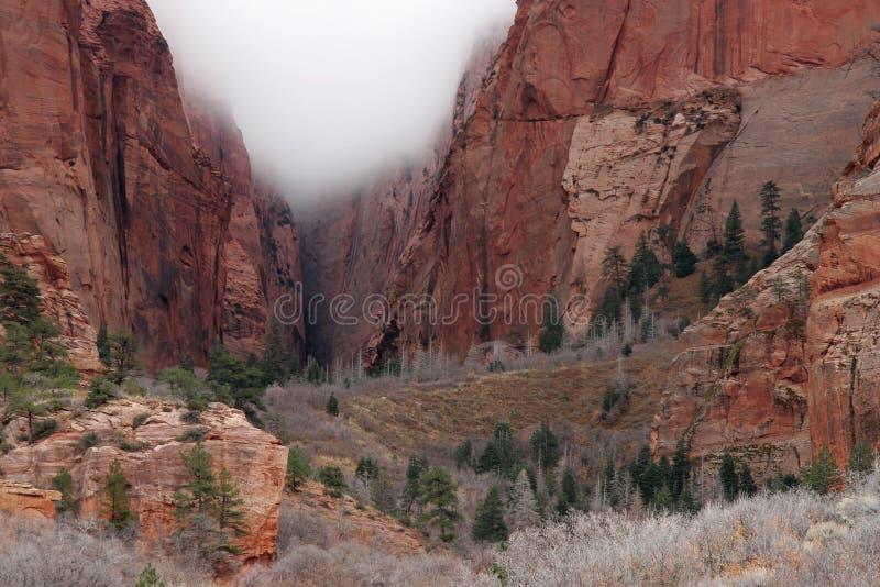 Nuvola in un parco nazionale di Zion del canyon immagine stock