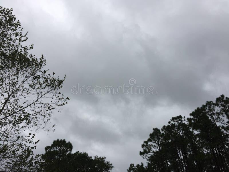 Nuvole che si riuniscono prima della tempesta fotografia stock libera da diritti
