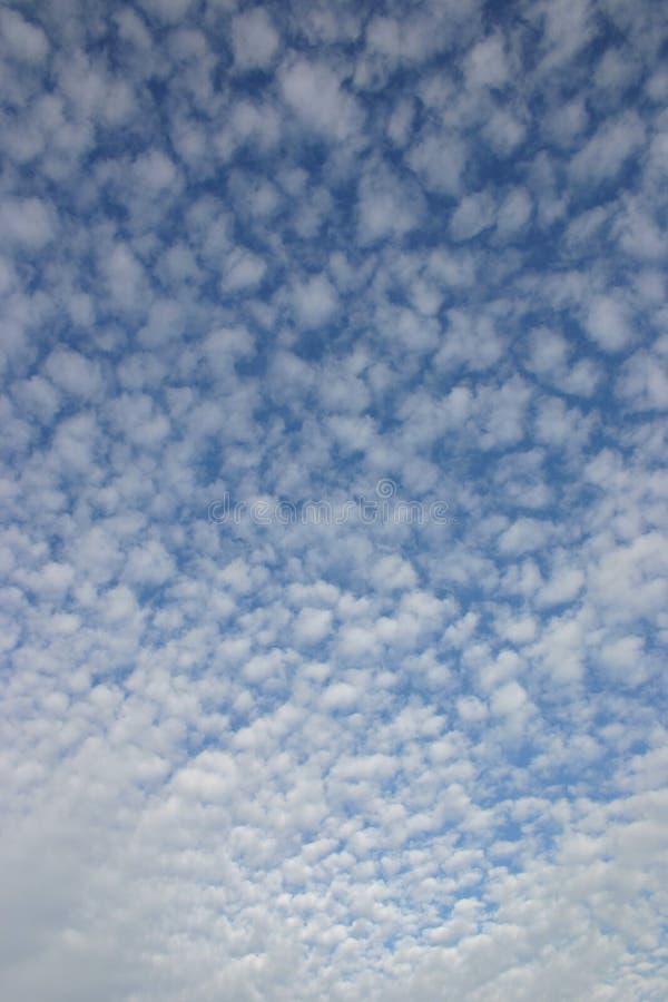 Nuvole dell'ovatta fotografia stock libera da diritti