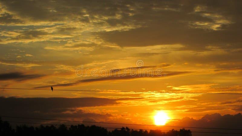 Nuvole dorate di bella alba immagine stock