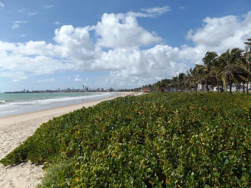 Nuvole e vista della spiaggia dalla spiaggia sabbiosa del pessoa di joao fotografia stock libera da diritti