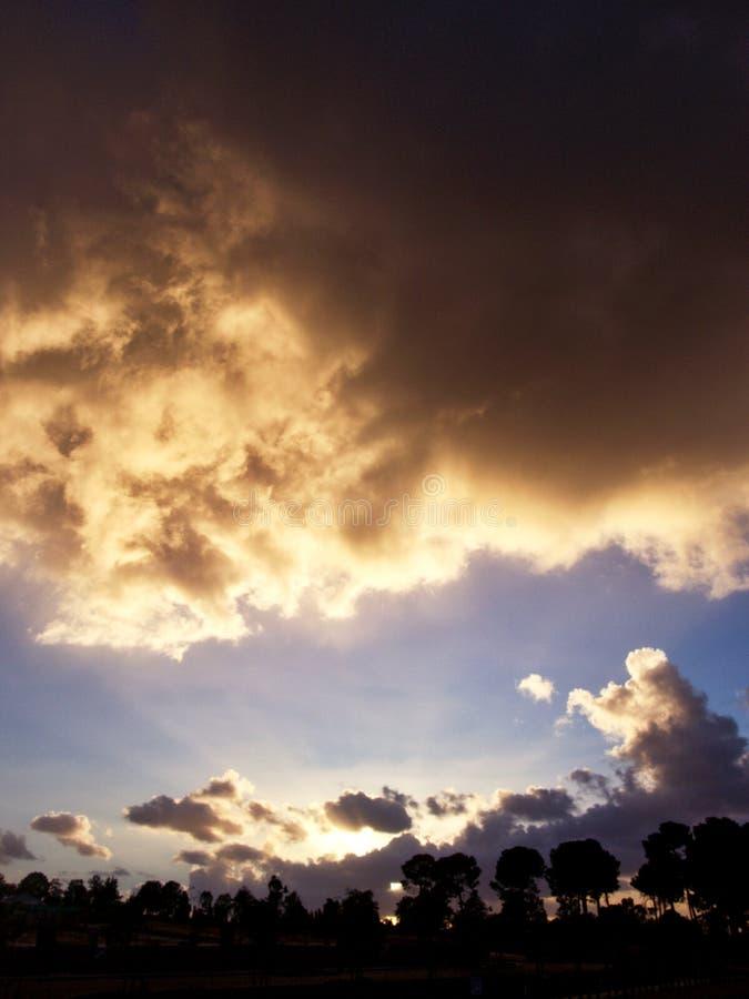 Nuvole ed alba sopra una foresta fotografia stock libera da diritti