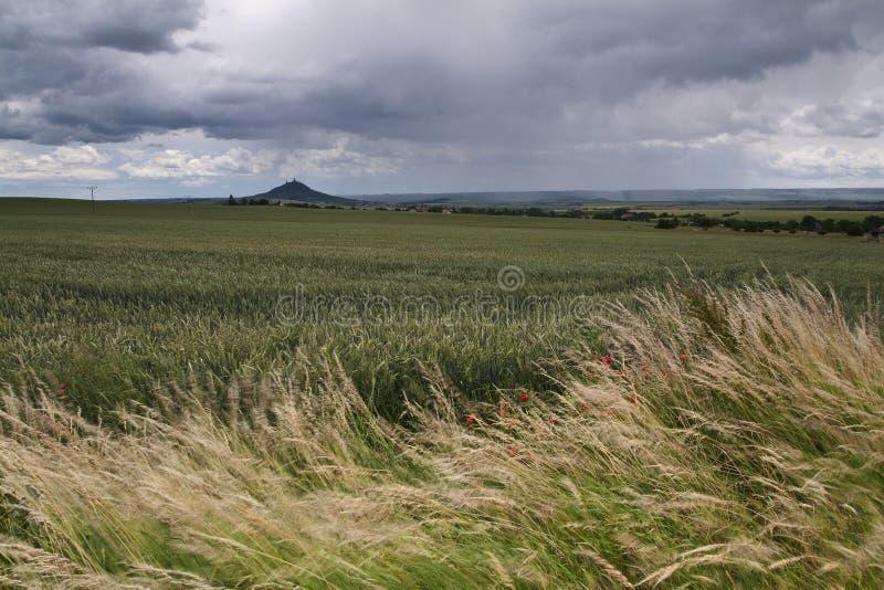 Nuvole grige che si rivoltano azienda agricola fotografia stock