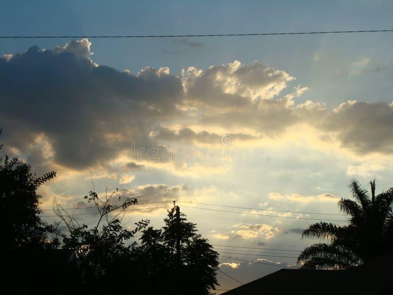 Nuvole lanuginose con gli alberi fotografia stock