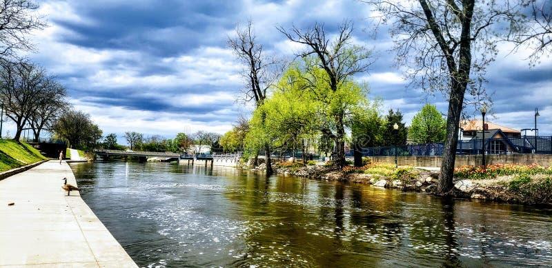 Nuvole, luce del giorno, alberi, foglie, acqua Via, ombre immagini stock