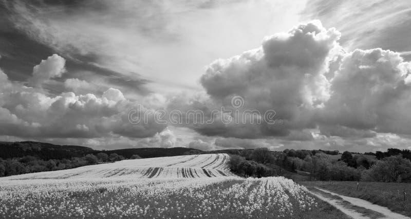 Nuvole temporalesche fotografie stock libere da diritti