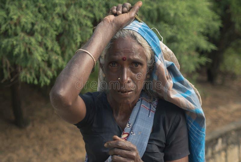 NUWARA ELIYA, SRI LANKA - January 14 : Tea picker woman portrait female on the road near tea factory stock photography