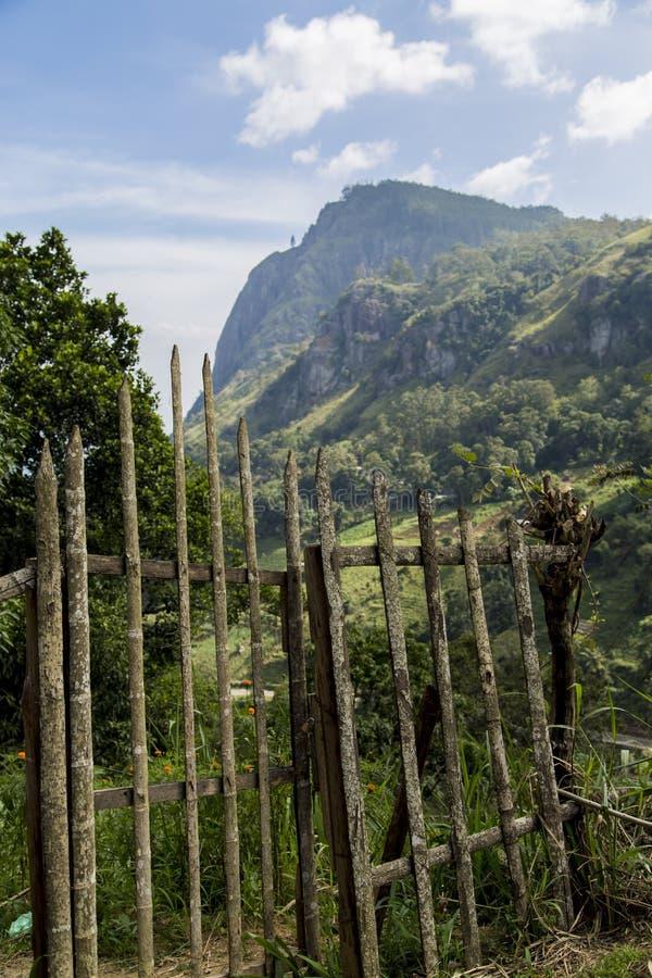 Nuwara, Sri Lanka royalty-vrije stock afbeelding
