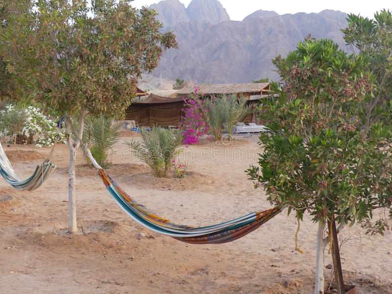 Nuweiba, Sinai royalty free stock photo